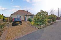 2 bed Detached Bungalow in Devonshire Road...