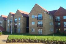 Chafford Flat to rent