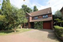 7 bedroom Detached property for sale in Wakes Colne, Wickford...