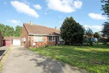 Semi-Detached Bungalow for sale in Nipsells Chase, Mayland