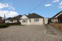 Detached Bungalow in Louvaine Avenue...
