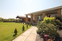 3 bed Detached Bungalow in Honiley Avenue, Wickford...