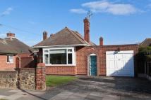 Detached Bungalow in Branscombe Square...
