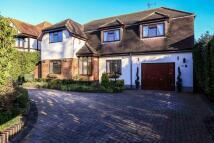 4 bedroom Detached property for sale in Woodlands Road, Hockley