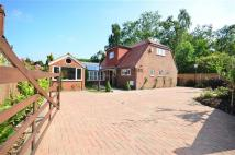 Detached home for sale in Endswell Cottage...
