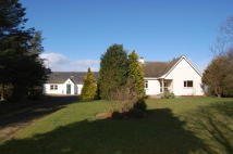Detached home for sale in St Teilo Muir of...