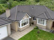 Detached Bungalow for sale in Sneddon Place, Airth...