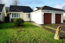 Detached Bungalow in Gunnislake