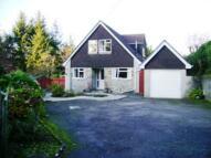 Bungalow to rent in St Dominick, Saltash...
