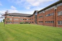 property to rent in Suite 10