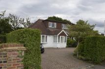 3 bedroom semi detached house in Elmside, Guildford