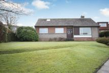 Detached Bungalow in 1 Hawthorne Place...
