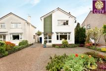 3 bed Detached Villa in 48 Whitelea Road...