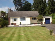 3 bedroom Detached Bungalow in Rawlyn Road, Chelston...