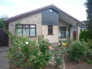 Detached Bungalow to rent in Ullswater Avenue...
