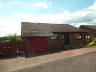 Detached Bungalow in Hillside, Sauchie, Alloa...
