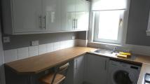 1 bed Flat to rent in Windsor Road, Falkirk...
