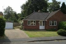 Bungalow to rent in Harpesford Avenue...