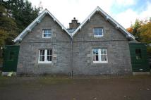 Cottage to rent in 2 Black Andrew Cottage...