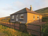 Cottage to rent in Blackgannoch Cottage...