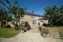 semi detached house to rent in Elemore Lane ...
