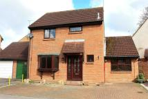Detached property to rent in DUNMOW, Essex