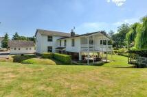 4 bedroom Detached home for sale in Barrington, Cambridge...
