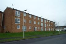 property to rent in NETTLECROFT, WELWYN GARDEN CITY.