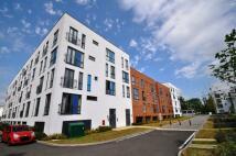 Apartment to rent in SALVISBERG COURT...