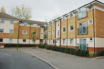 Apartment to rent in EDDINGTON CRESCENT...