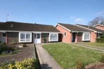 Bungalow to rent in St. Blaize Road, Romsey...