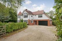 Detached property for sale in Hutwood Road, Chilworth...