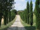 10 bedroom Farm House in Tuscany, Arezzo...