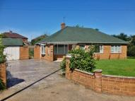 Bungalow in Harrogate Road, Ripon...