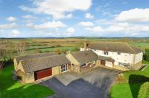 Detached house in Wilbarston...