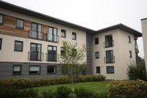 property to rent in Burnbrae Place