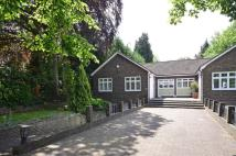 Bungalow to rent in Hendon Avenue, Finchley...