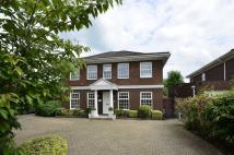 5 bedroom house in Flower Lane, Mill Hill...