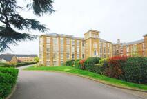 Princess Park Manor Flat to rent