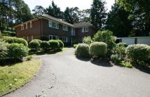 Farnham Apartment for sale