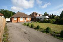 3 bed Chalet in Farnham