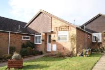 Terraced Bungalow to rent in Farnham