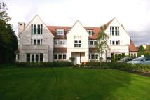 2 bedroom new Apartment to rent in Farnham