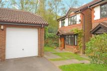 3 bed Detached house in Warfield, Berkshire