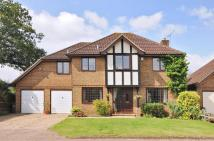 4 bed Detached house for sale in Warfield, Bracknell