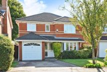 4 bed Detached house for sale in Warfield, Berkshire