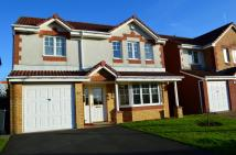 Detached Villa in 72 Hawkhill Drive...