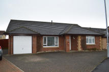 3 bed Detached Bungalow in 62 Moffat Wynd...