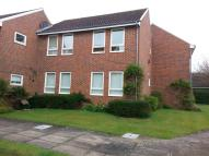 Moggs Ground Flat to rent