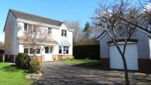 Ward Place Detached property for sale